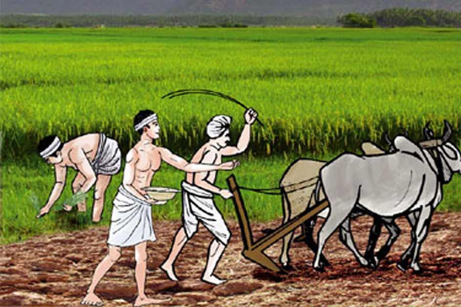 कोरोनापछिको अर्थतन्त्रः कृषिलाई प्राथमिकता दिन सुझाव