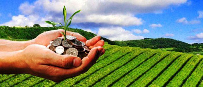 कोरोनापछिको अर्थतन्त्र : कृषिलाई प्राथमिकता दिन सुझाव