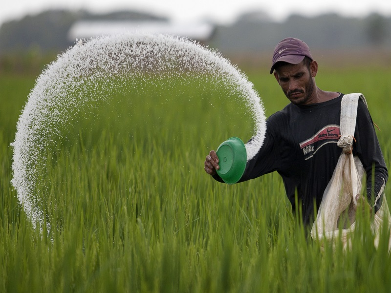 कृषि सामग्री र बीउमा ५० प्रतिशत अनुदान दिने